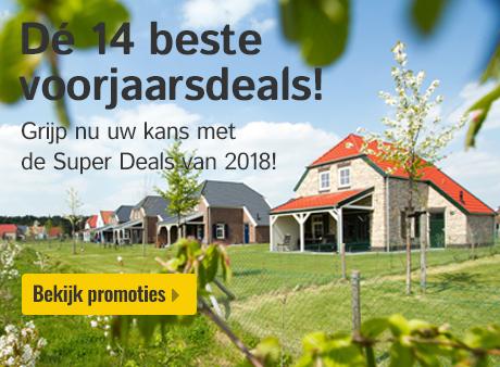 14 Super Deals