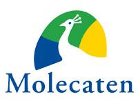 vakantiehuisje Molecaten