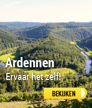 Bungalowpark in de Ardennen