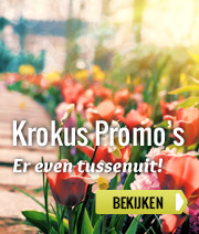Krokus Promo's vakantieparken
