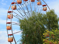 Bungalowparken nabij Toverland