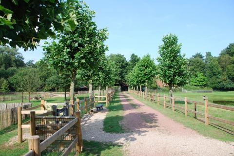 Recreatiepark Het Winkel